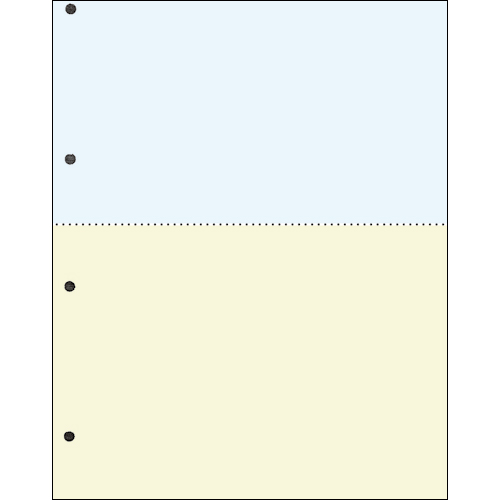 TANOSEE 汎用マルチタイププリンタ帳票 カラー用紙 A4 2分割 4穴 1箱(2500枚:500枚×5冊)