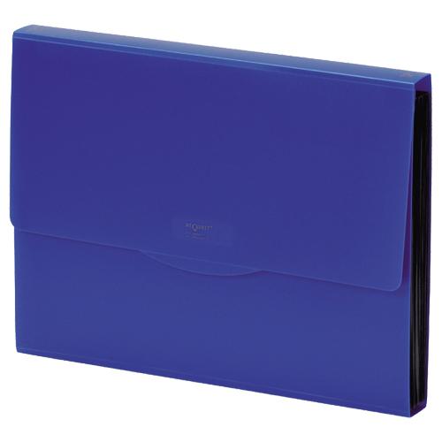 リヒトラブ リクエスト 不透明ドキュメントファイル A4 13ポケット 藍 G5800-11 1冊