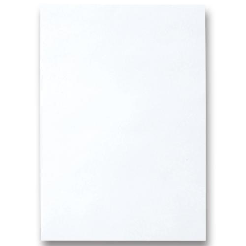 TANOSEE 色画用紙 四つ切 ゆき 1パック(10枚)