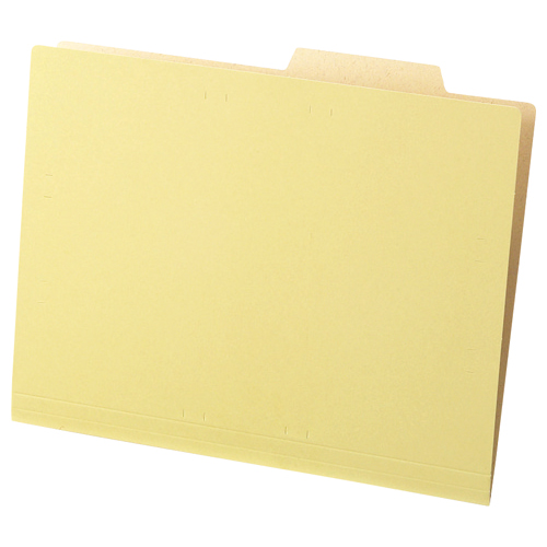 TANOSEE 個別フォルダー(クラフト厚紙タイプ) A4 1セット(200冊:50冊×4パック)